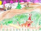 Amy Robertson, Highland Santa Cows, age 10